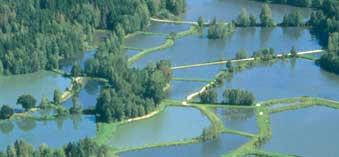 navi-land-der-1000-teiche2